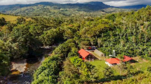 Artisanal Coffee and Fruit Farm and Family Estate in San Isidro