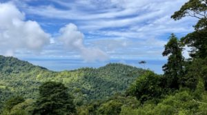 Subdividable Ocean View Farm with Self Sustainable Qualities Near Uvita