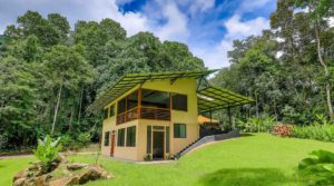 Sustainable Property with Mature Food and Herb Forest in Tinamastes